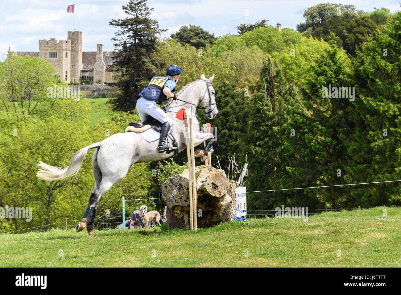 Rockingham Castle, Corby, UK. 21st May, 2017. Jack Ashworth and his horse Kafka clear a log obstacle with Rockingham Stock Photo