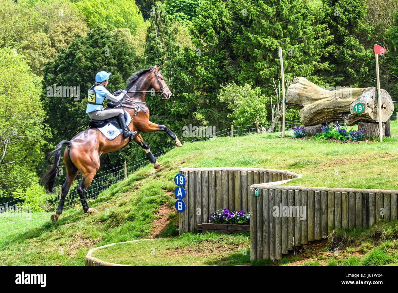 Rockingham Castle, Corby, UK. 21st May, 2017. Izzy Taylor and her horse Zippi Jazzman run uphill towards a log obstacle Stock Photo