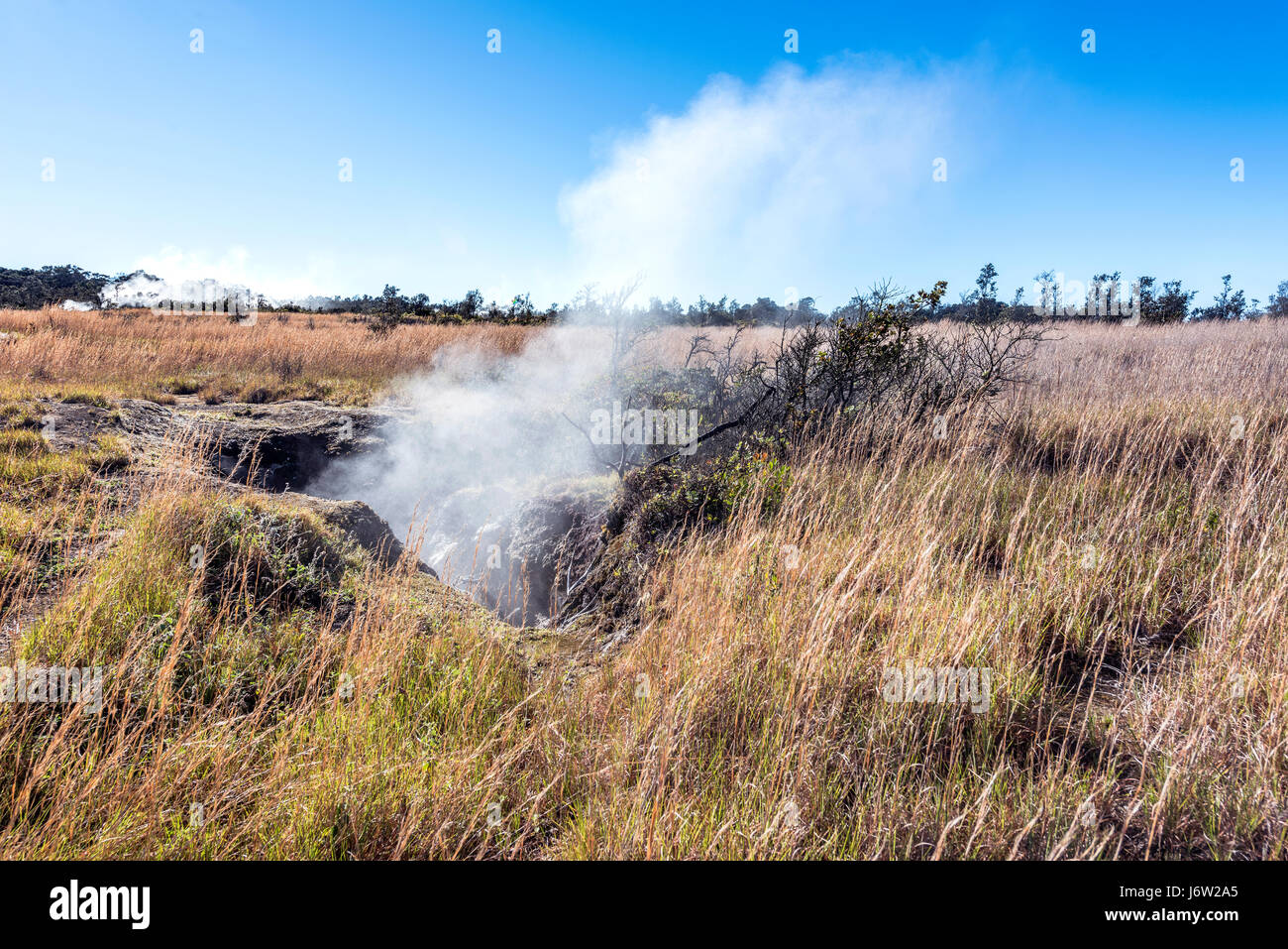 Natural steam rising from a volcanic steam vent in the earth at Volcano National Park, Kilauea Hawaii. - Stock Image