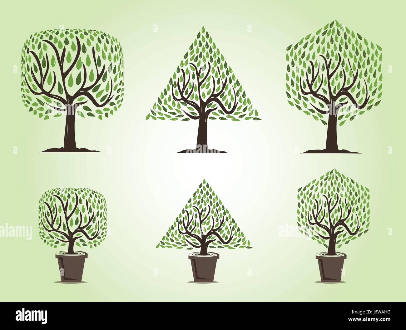 Set Of Tree With Two Types Of Trees Garden Trees And Decorative