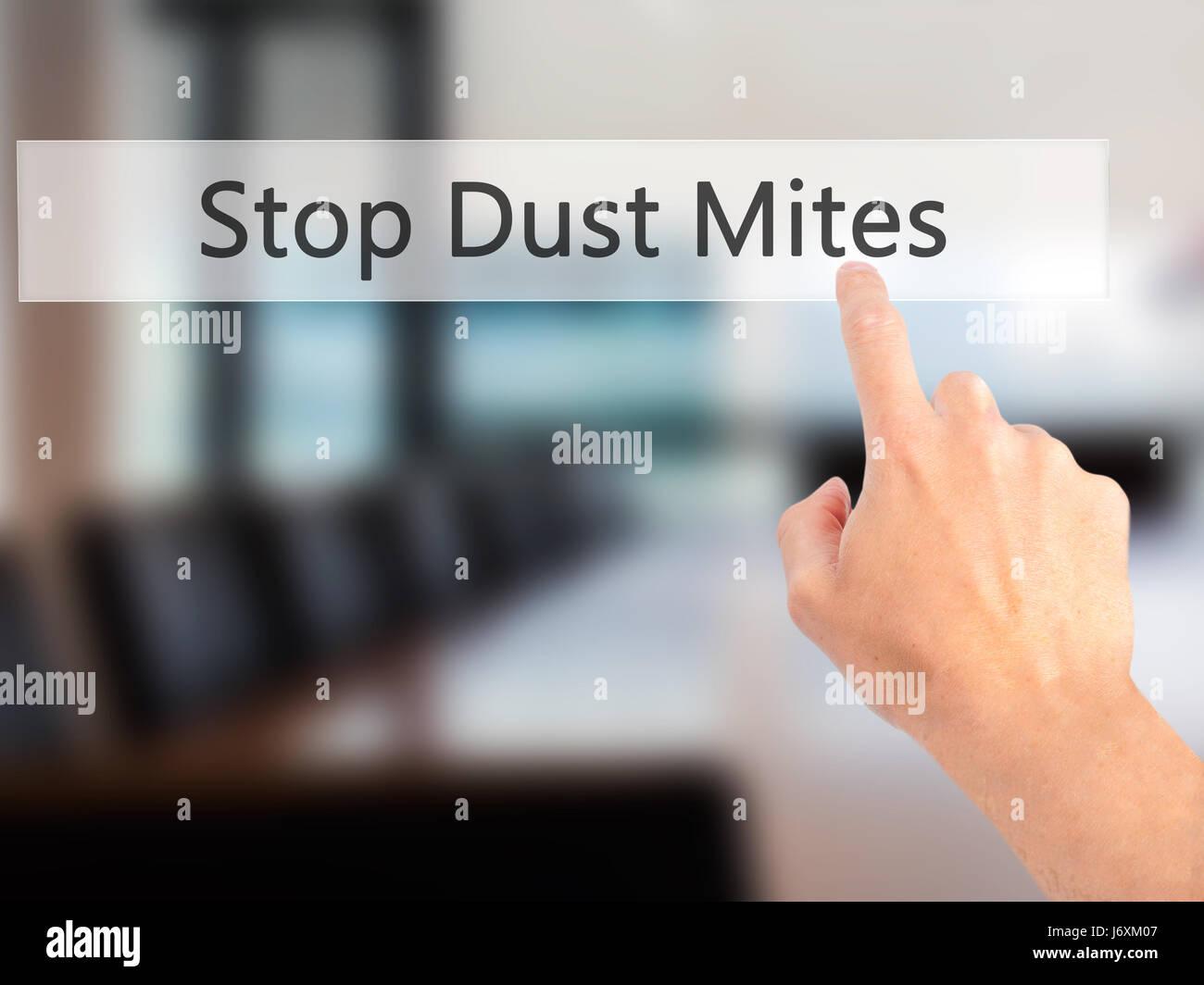 Dust Mites Stock Photos & Dust Mites Stock Images - Alamy