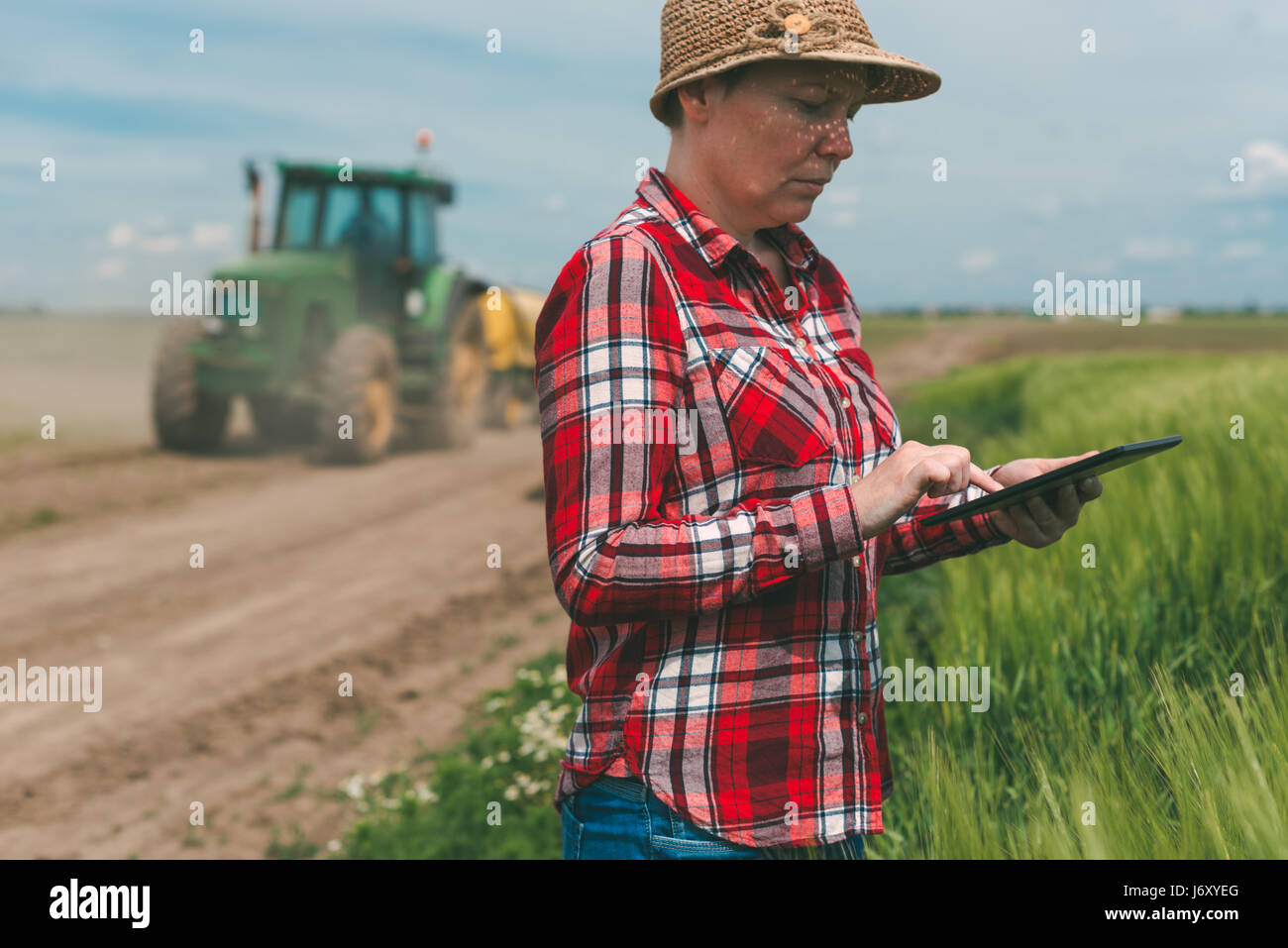 Smart Farming Using Modern Technology In Agricultural Activity Female Farmer Agronomist With Digital Tablet Computer Mobile App Wheat Crops