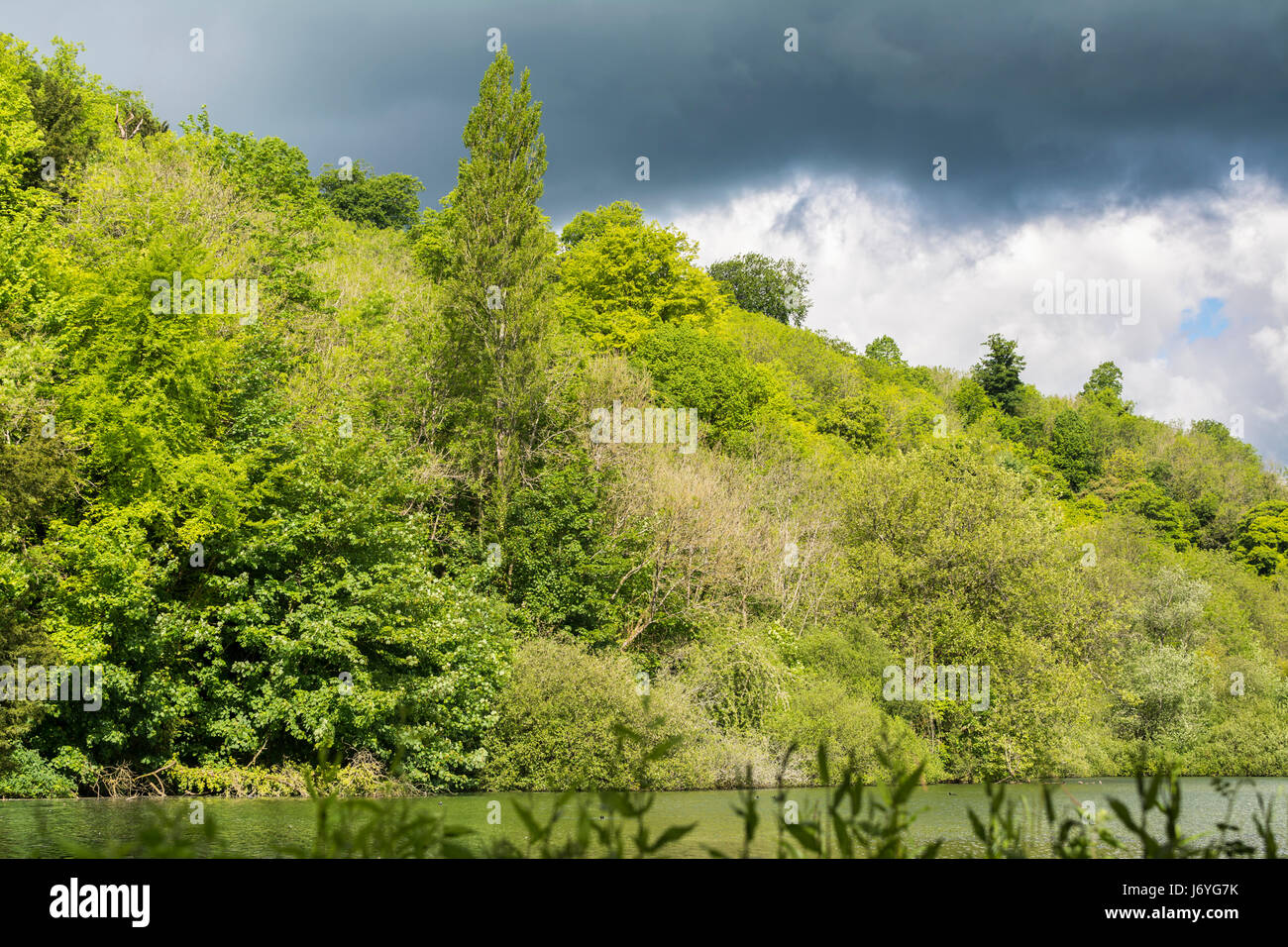 Storm clouds approaching over woodland on a previously bright sunny day. - Stock Image