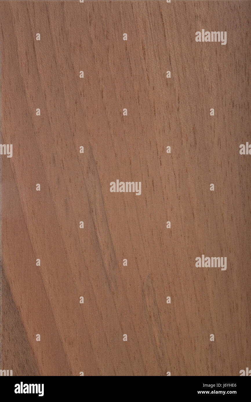 wooden surface walnut - walnut wood - Stock Image
