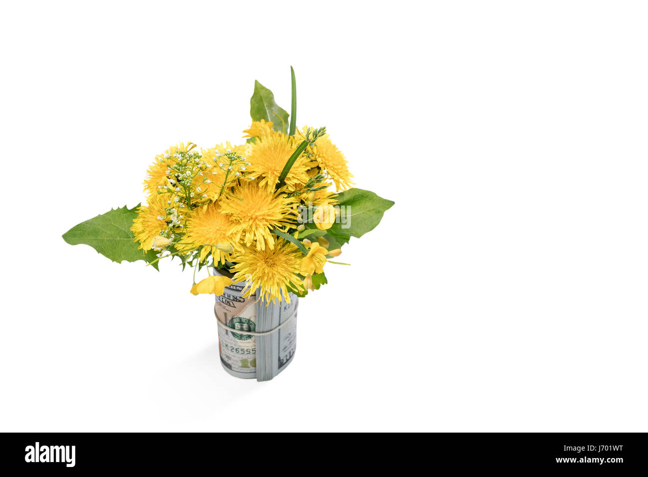Beautiful spring bouquet in the money - Stock Image