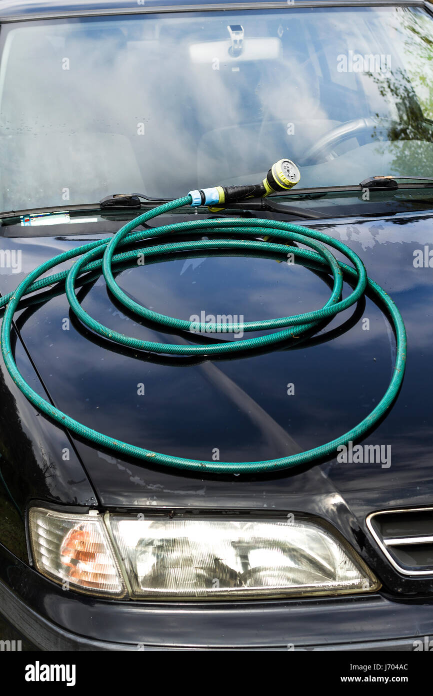 Coiled garden hose lies on the car's hood. - Stock Image