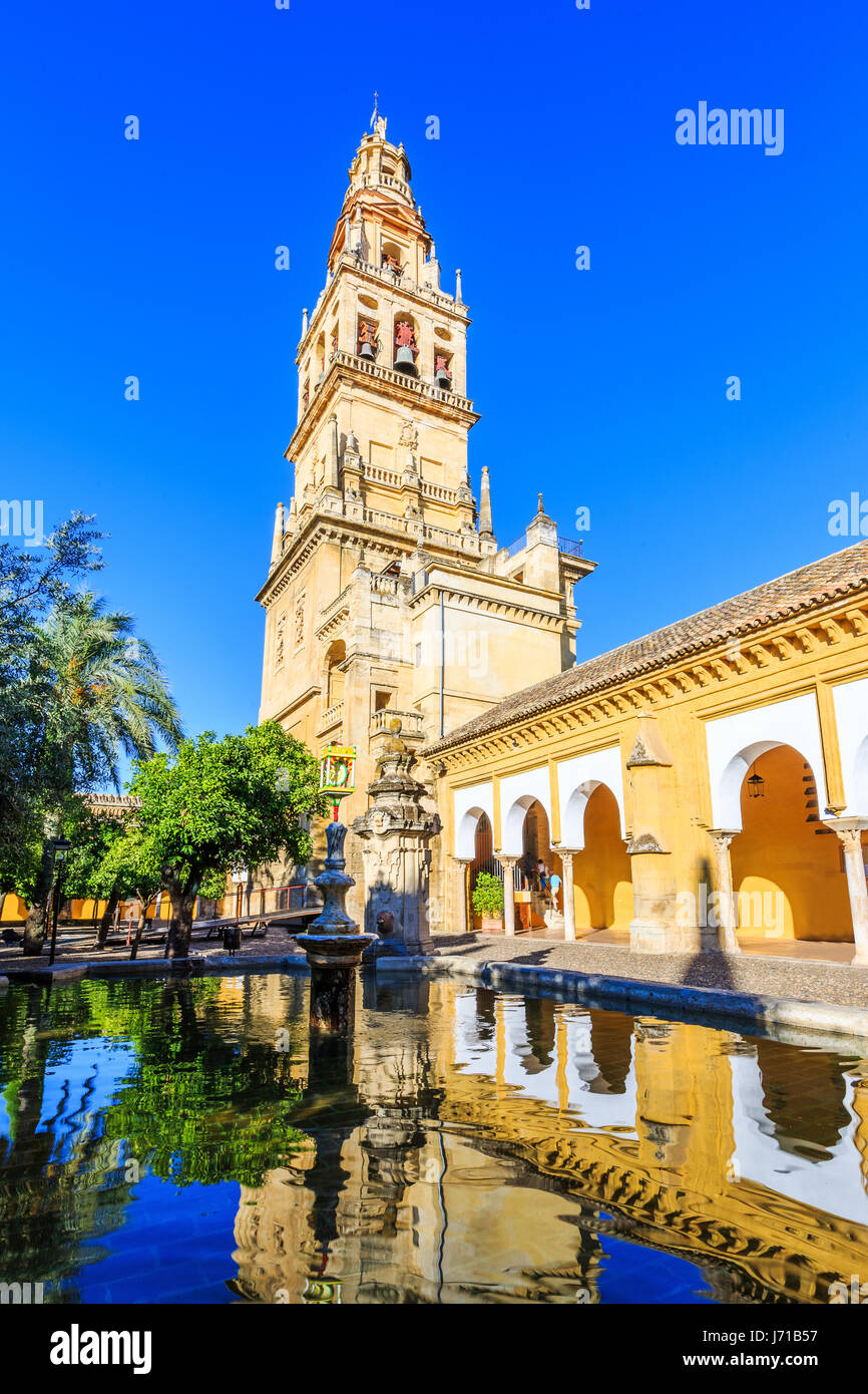 Cordoba, Spain. Bell tower at the Mezquita Mosque-Cathedral from Court of Oranges. - Stock Image