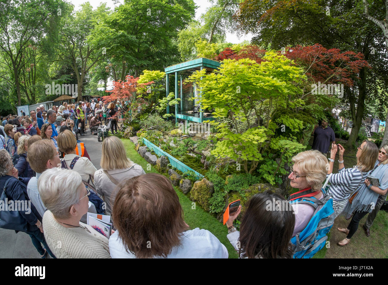 The Royal Hospital Chelsea, London, UK. 23rd May, 2017. The annual pinnacle of the horticultural calendar, the RHS - Stock Image