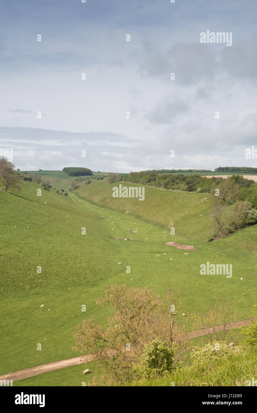 The dry valley of Thixen Dale in the Yorkshire Wolds - Stock Image