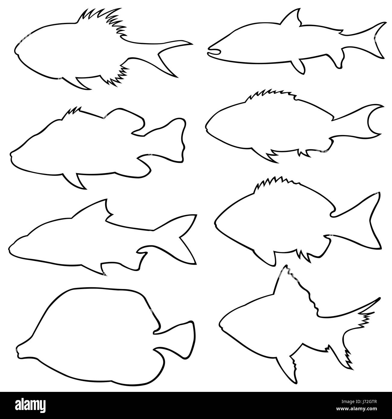 Set of different small fish silhouettes isolated on white - Stock Image