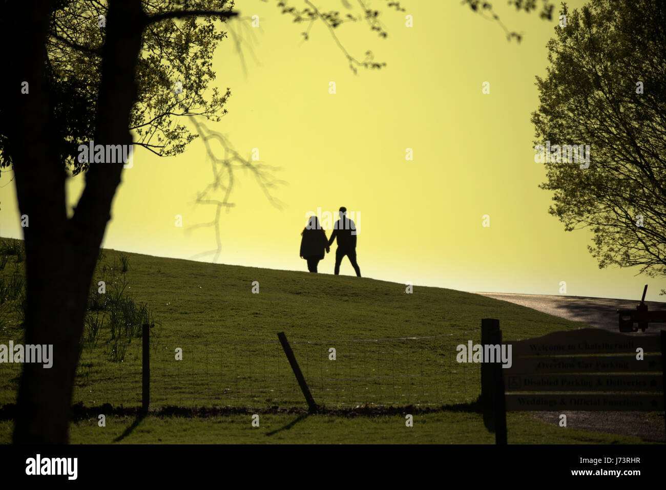 young couple holding hands going off into the sunset Chatelherault Country Park - Stock Image