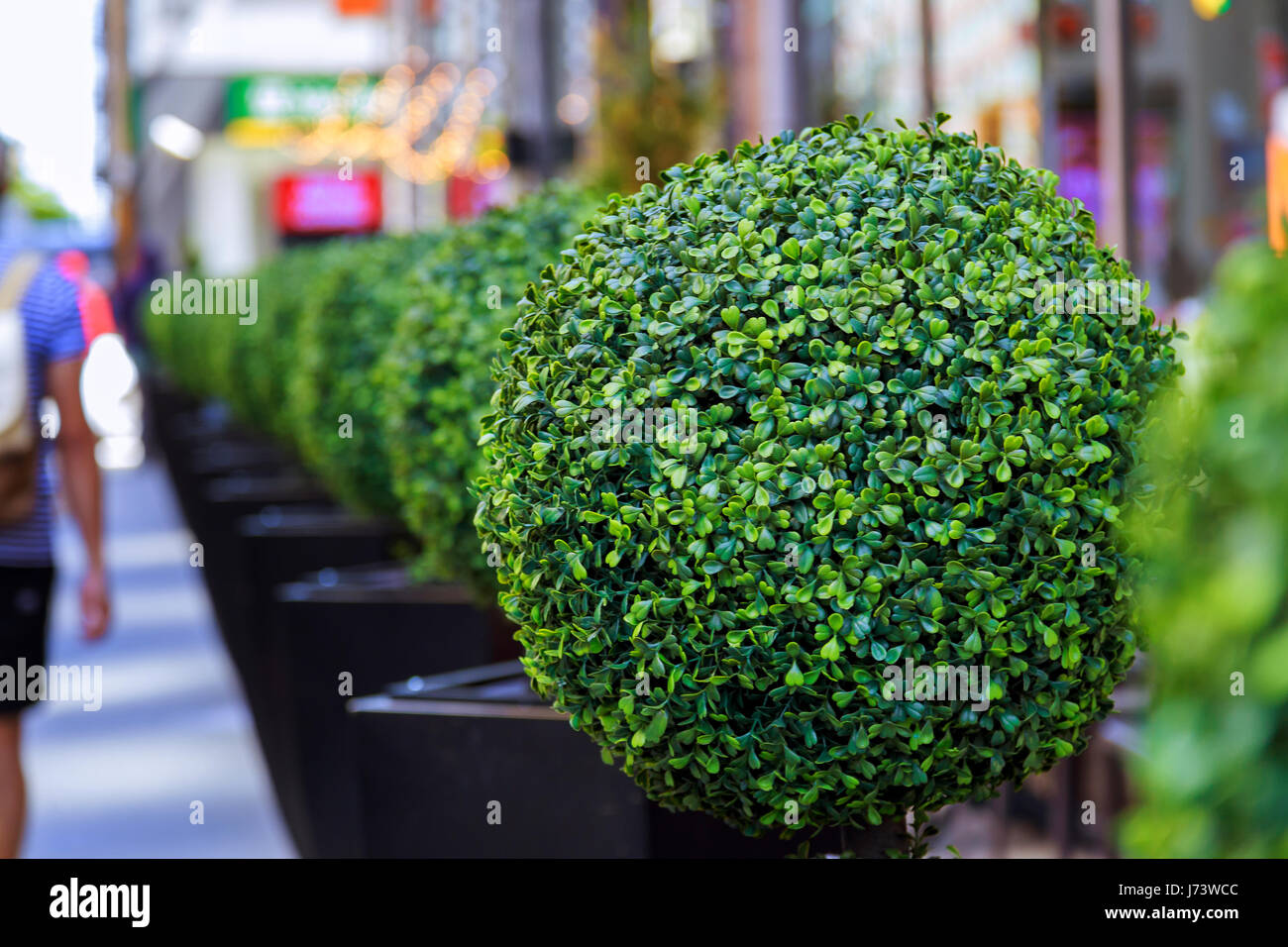 The exterior of the hotel and restaurant, with flowering small trees - Stock Image