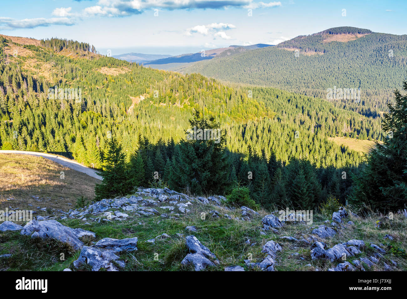 Classic Carpathian landscape. Autumn landscape in mountains of Romania. Conifer forest on hillsides of Apuseni National Stock Photo