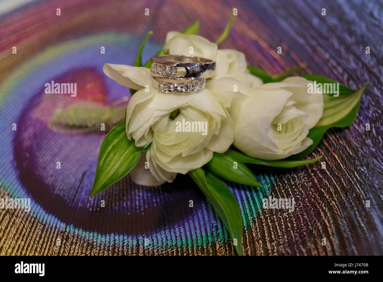 Wedding rings roses day ceremony - Stock Image