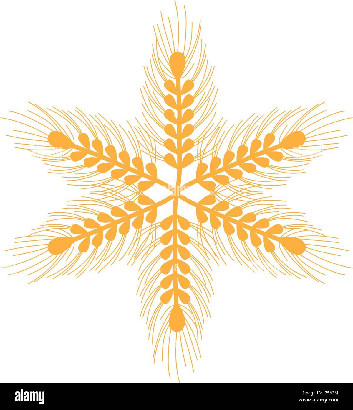 healthy wheat organ plants nutricious - Stock Vector