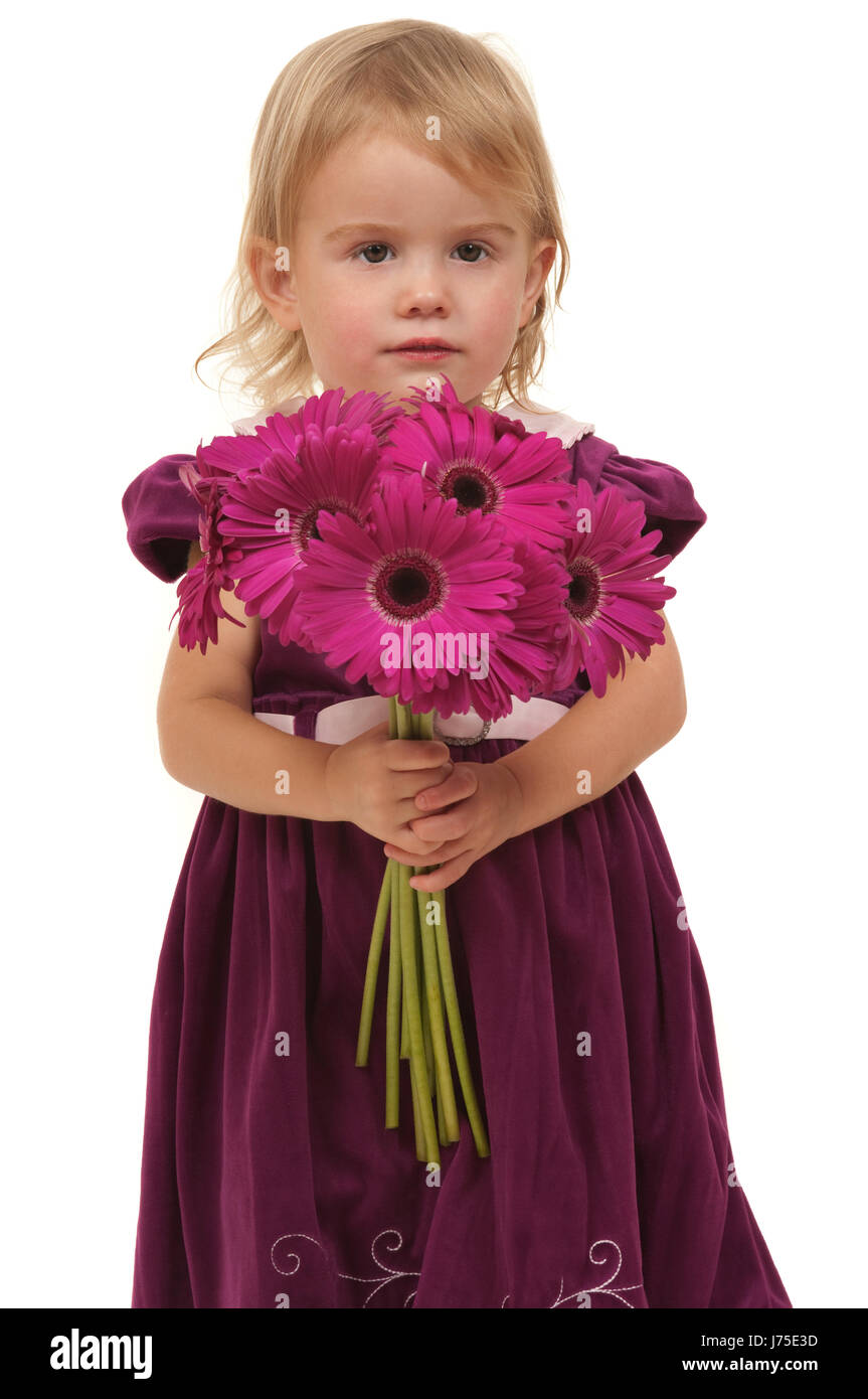 flower plant maddening pert coquettish cute child birthday daugther daughter - Stock Image