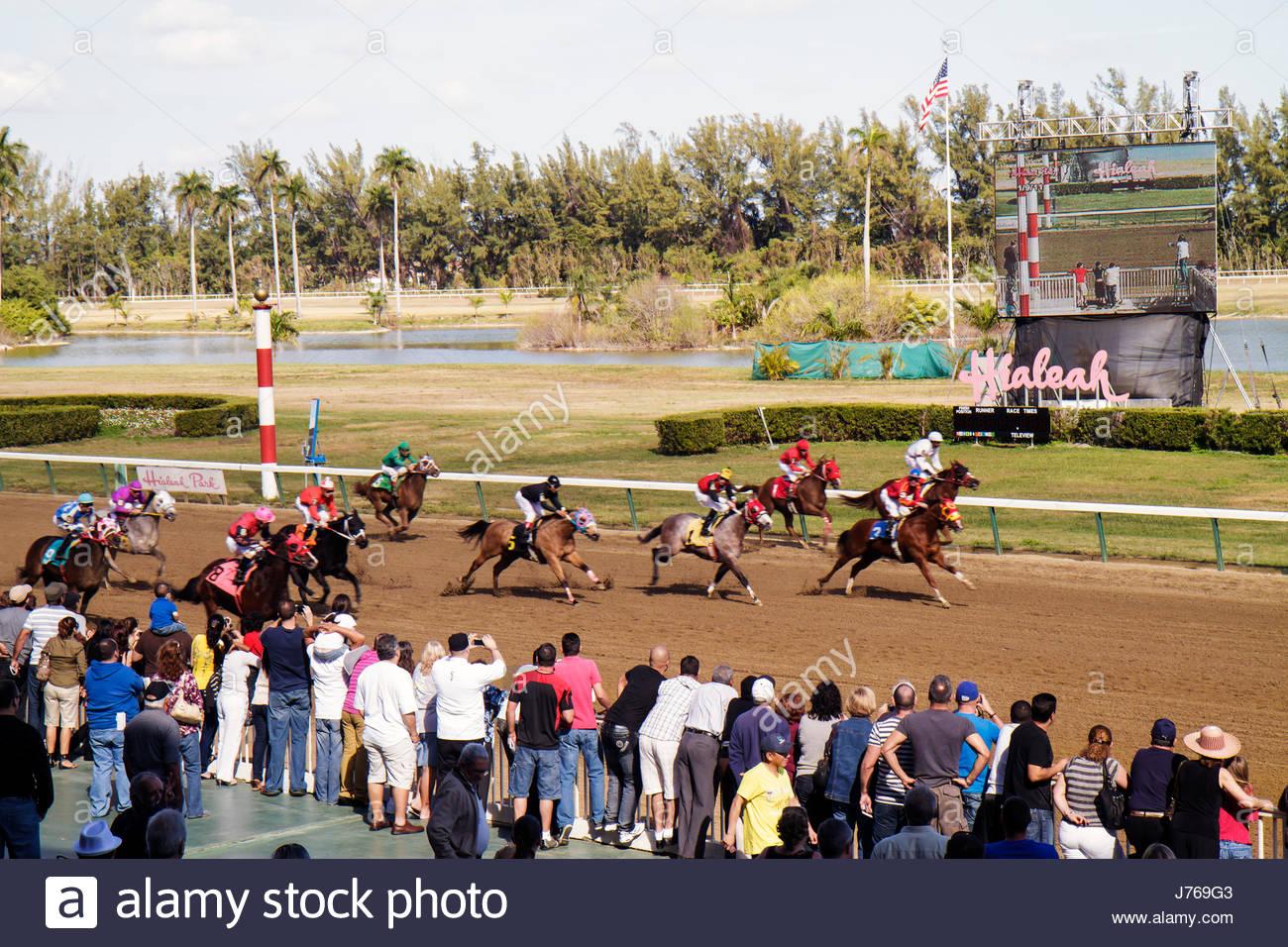 HialeahMiami Florida Hialeah Park quarter horse racing racetrack finish line crowd bettors Stock Photo