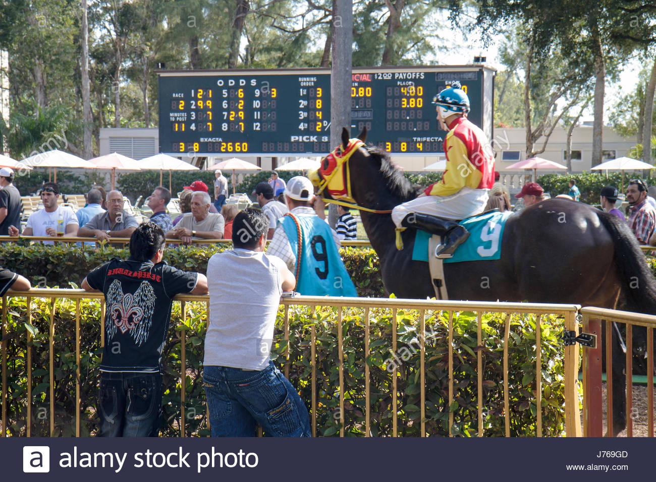 HialeahMiami Florida Hialeah Park quarter horse racing racetrack jockey odds tote board Stock Photo