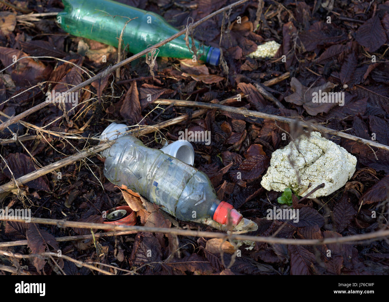 Plastic bottles and rubbish and polystyrene thrown away on rotting leaves - Stock Image