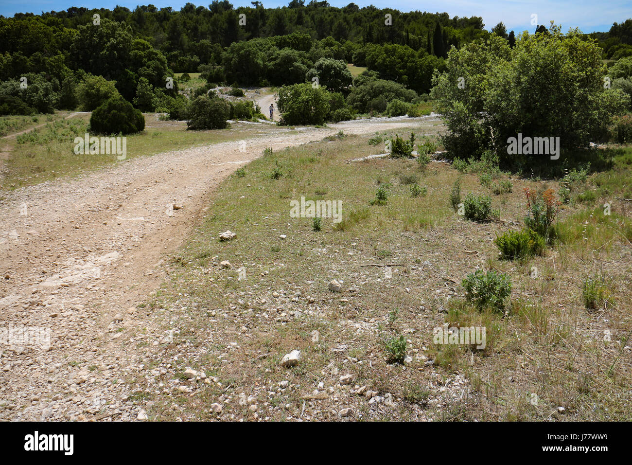 MTB cycling around Pelissanne in Provence - Stock Image