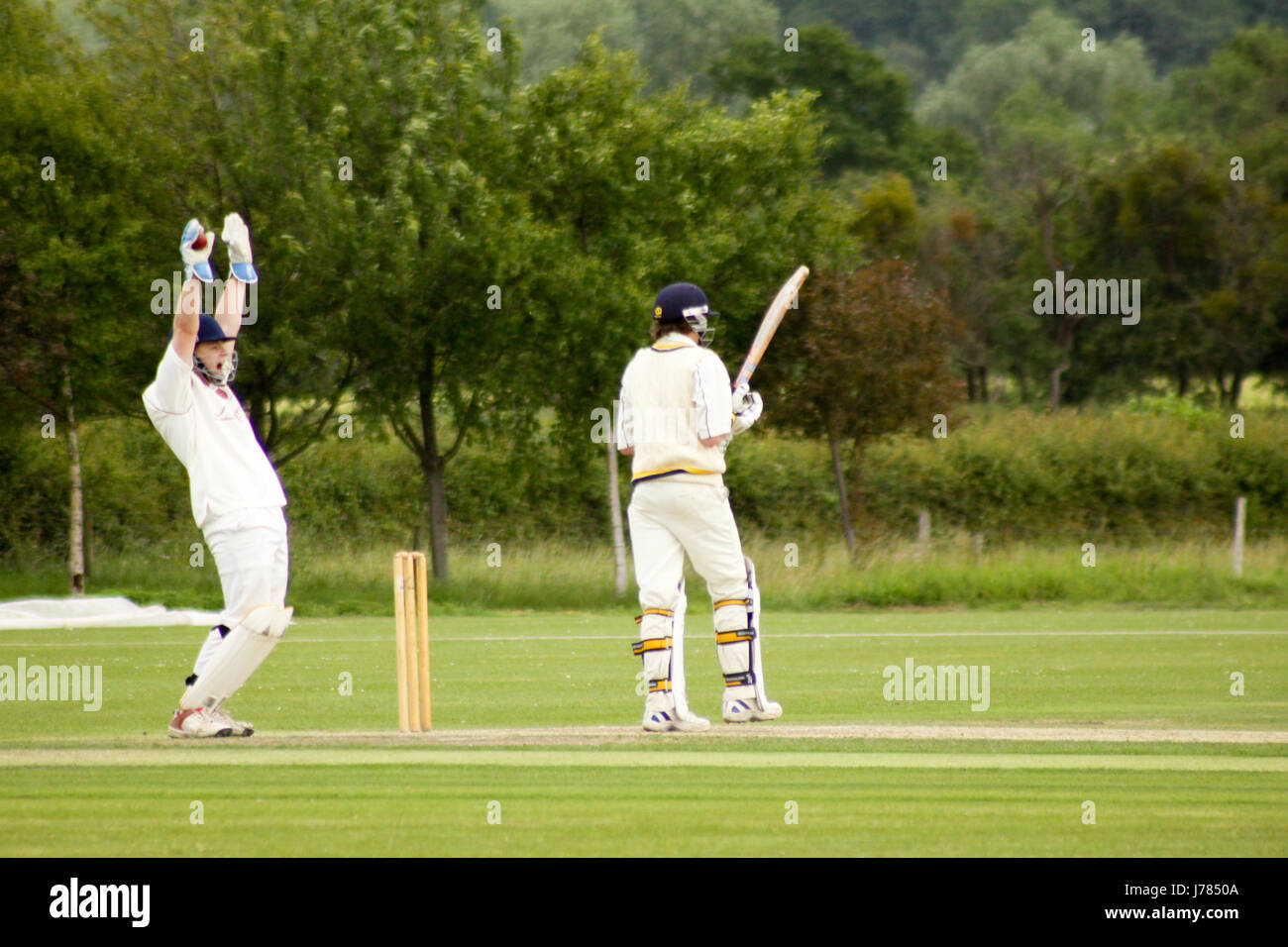 How's that! Wicket keeper makes a catch - Stock Image