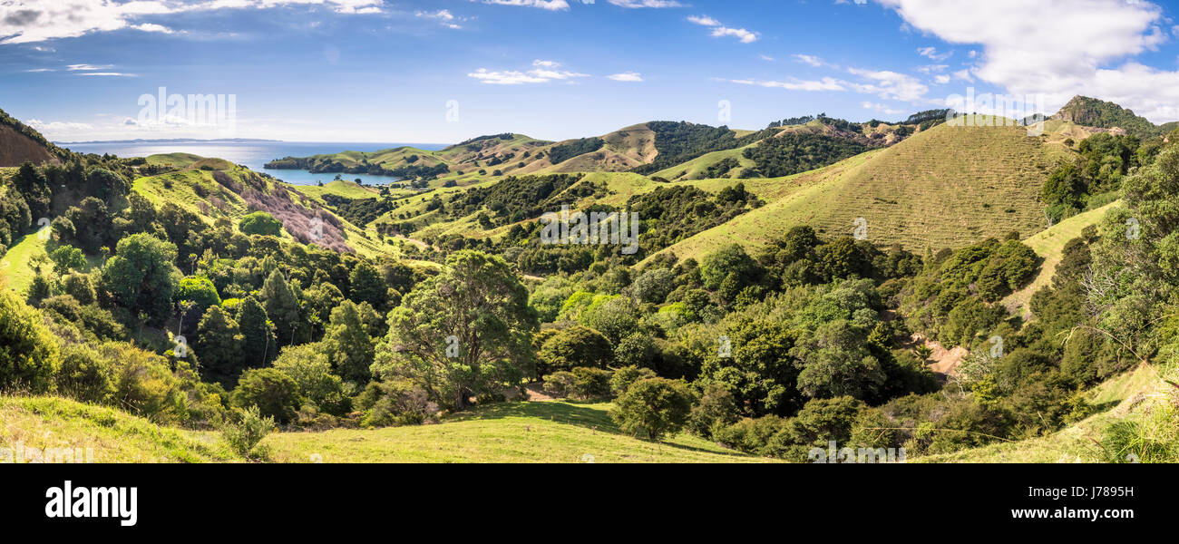New Zealand, Coromandel Peninsula, scenics - Stock Image