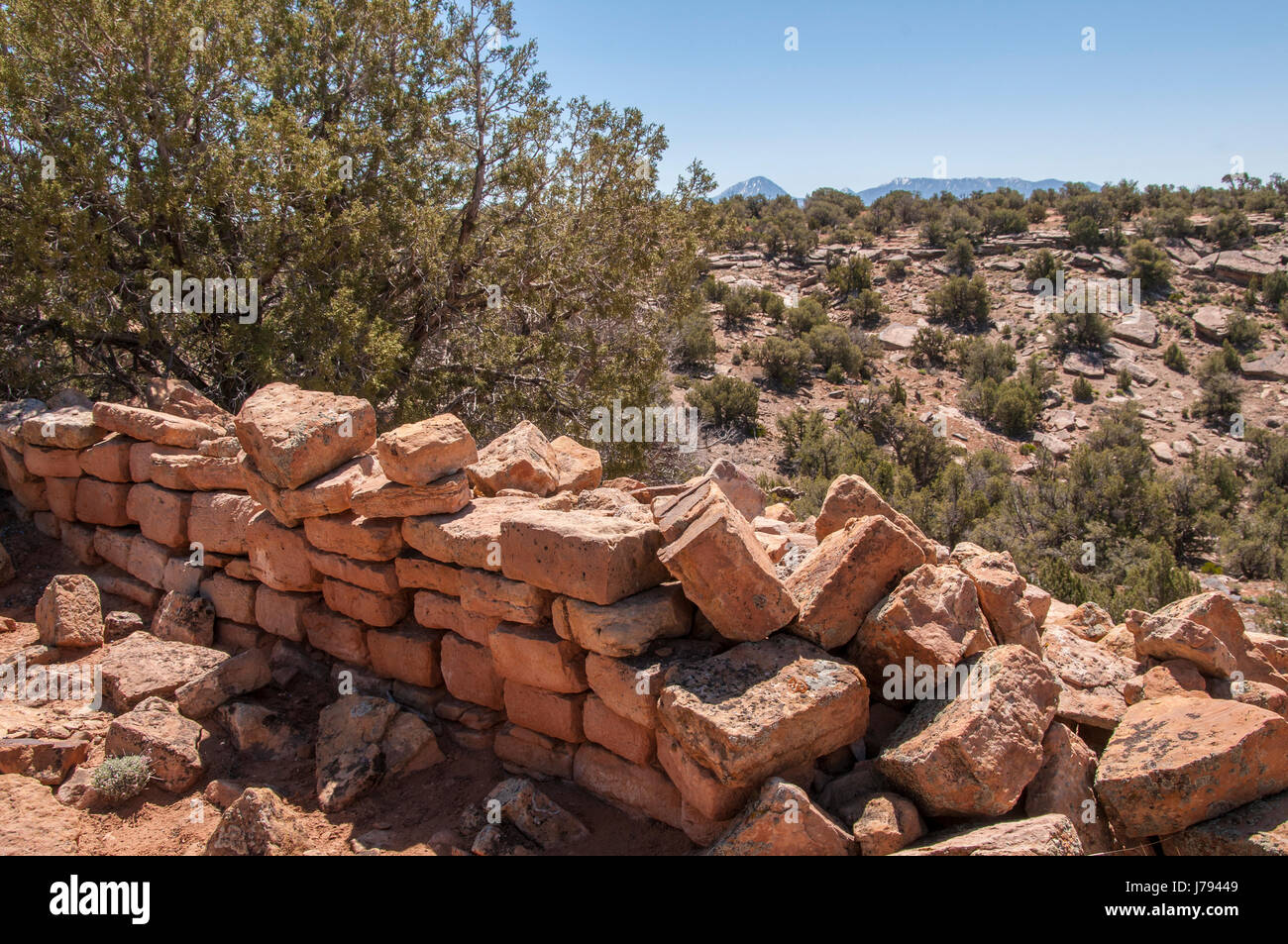 Ruins along BLM Ruin Point Road 4720, Canyons of the Ancients National Monument northwest of Cortez, Colorado. - Stock Image