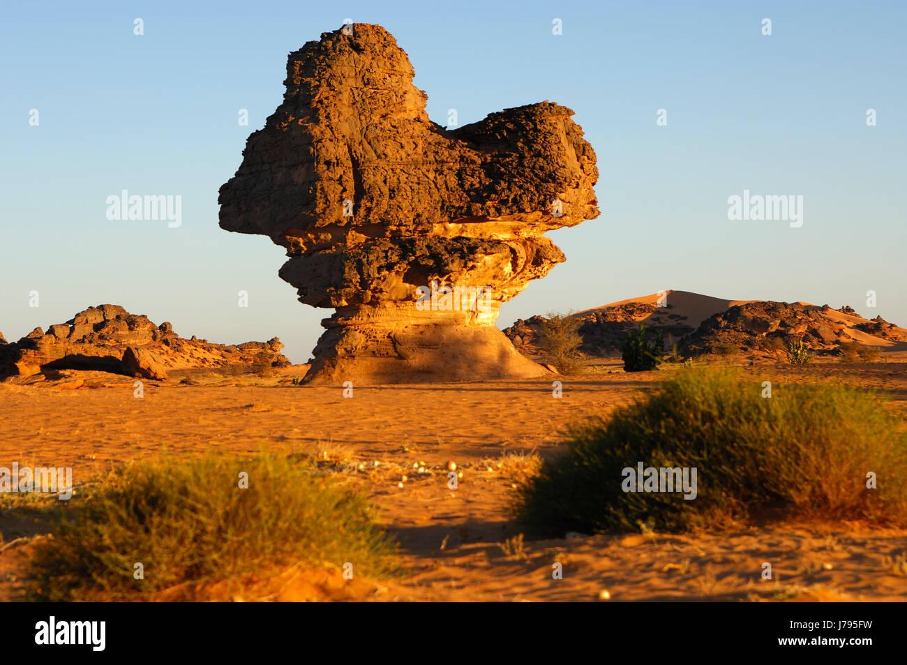 rock mushroom in acacus mountains,libya - Stock Image