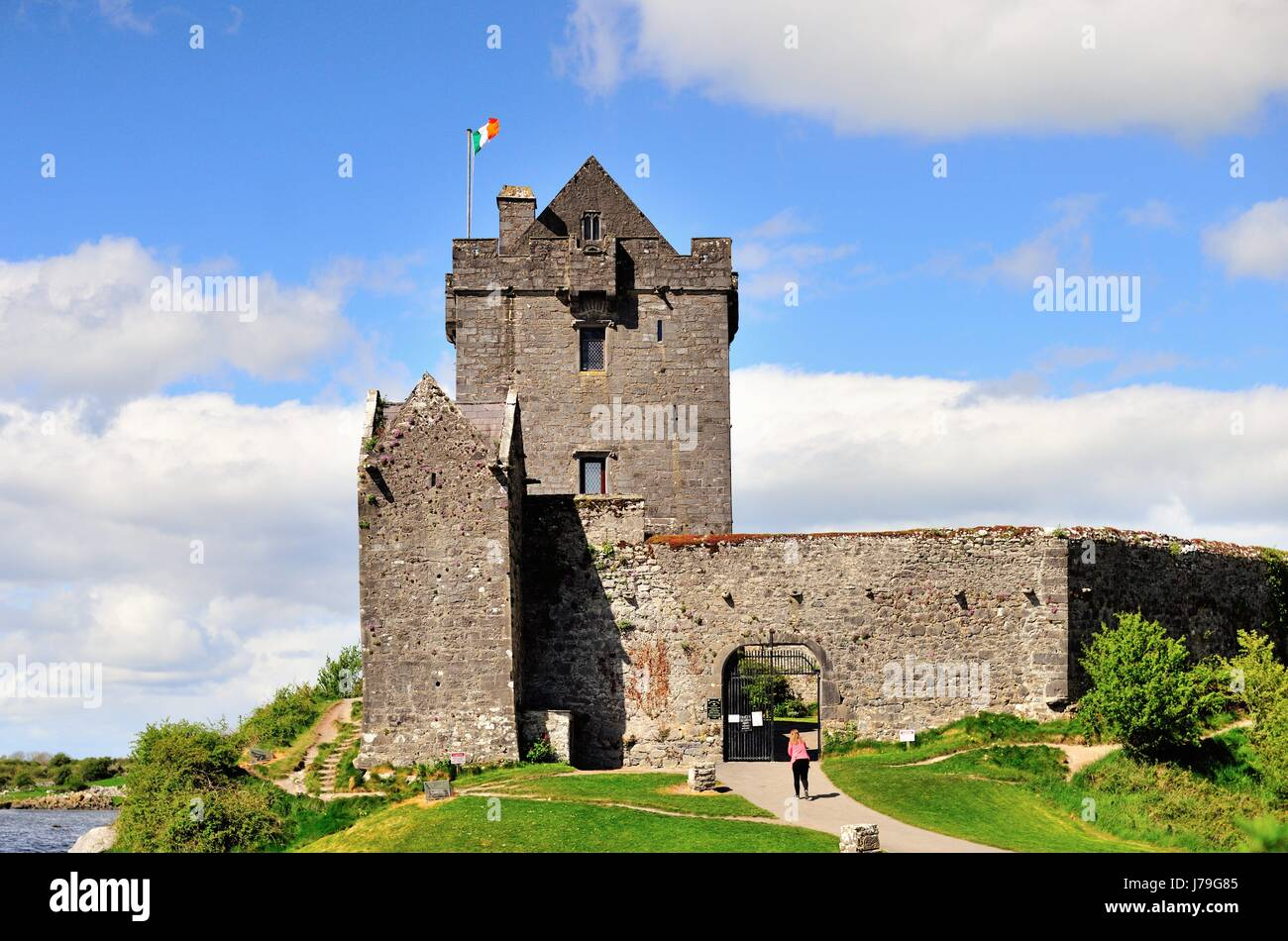 Dunguaire Castle in Kinvara, County Galway, Ireland. Dunguaire Castle was built in the 16th century. - Stock Image