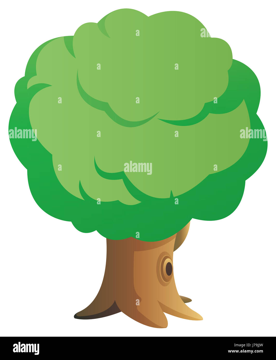 tree beautiful beauteously nice leaf object detail single big large enormous Stock Photo