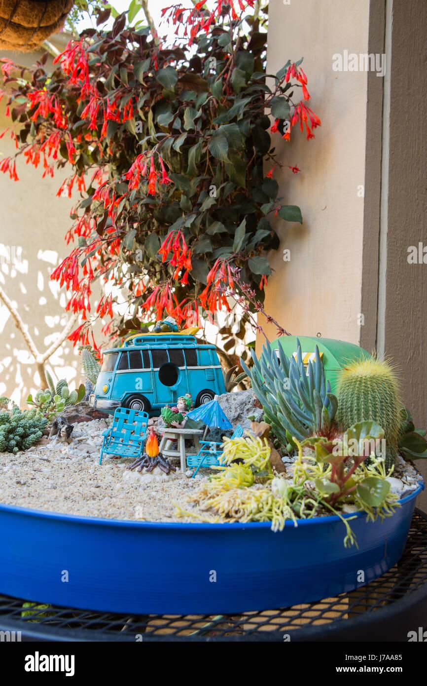 Cactus Garden. Miniature Cactus Fairy Garden In A Tabletop Planter.   Stock  Image