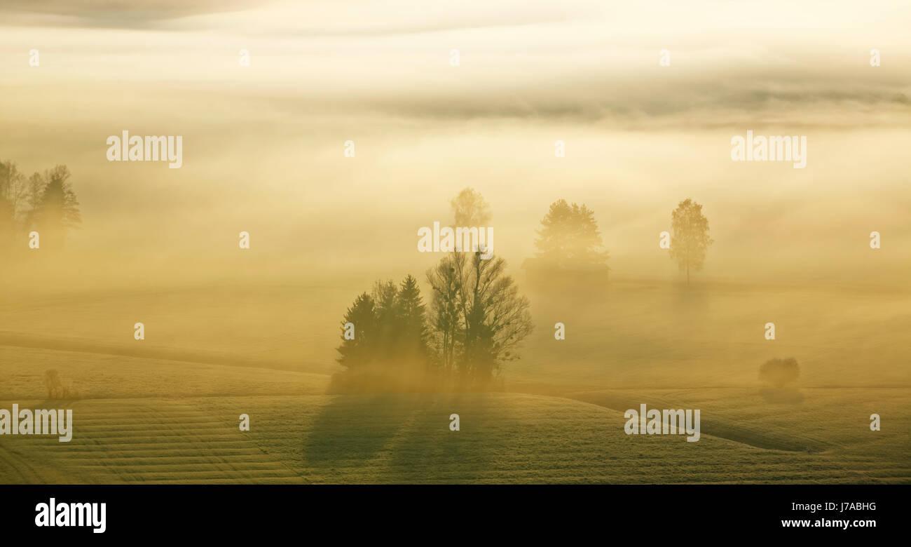 Morgennebel Ÿber Loisachmoor, Loisachtal bei Gro§weil, Blaues Land, Oberbayern, Bayern, Deutschland, Stock Photo