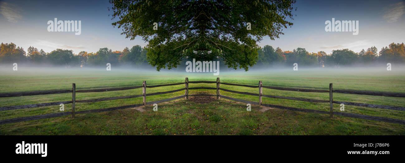 Symmetrical Landscape With Floating Tree, Fog & Fence - Stock Image