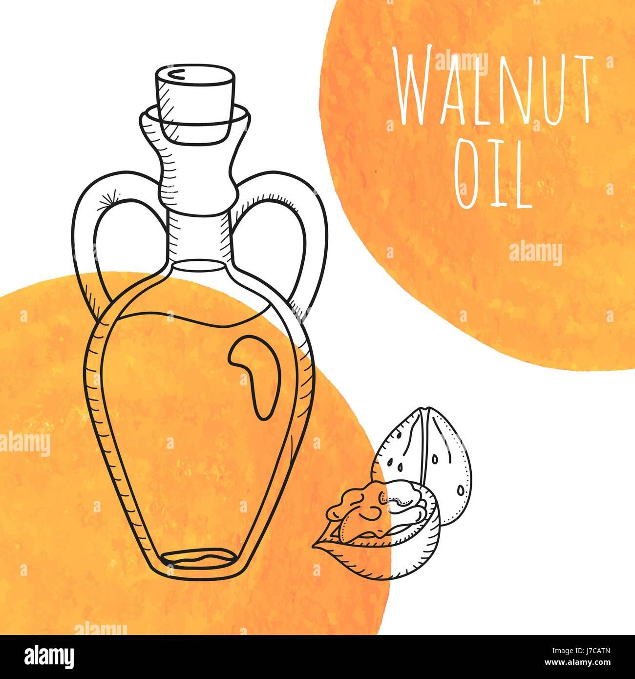 Hand drawn walnut oil bottle with orange watercolor spots - Stock Vector