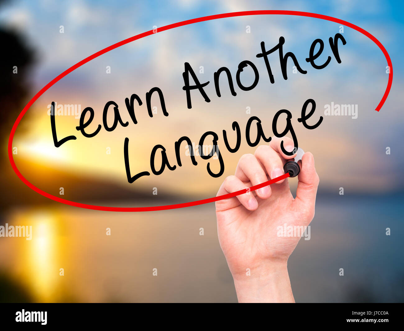 Man Hand writing Learn Another Language with black marker on visual screen. Isolated on nature. Learn, technology, - Stock Image