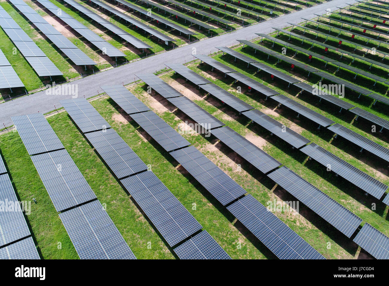 solar power station in the field by drone. Aerial view of Solar cell farm. Solar farm, solar panels from the air Stock Photo