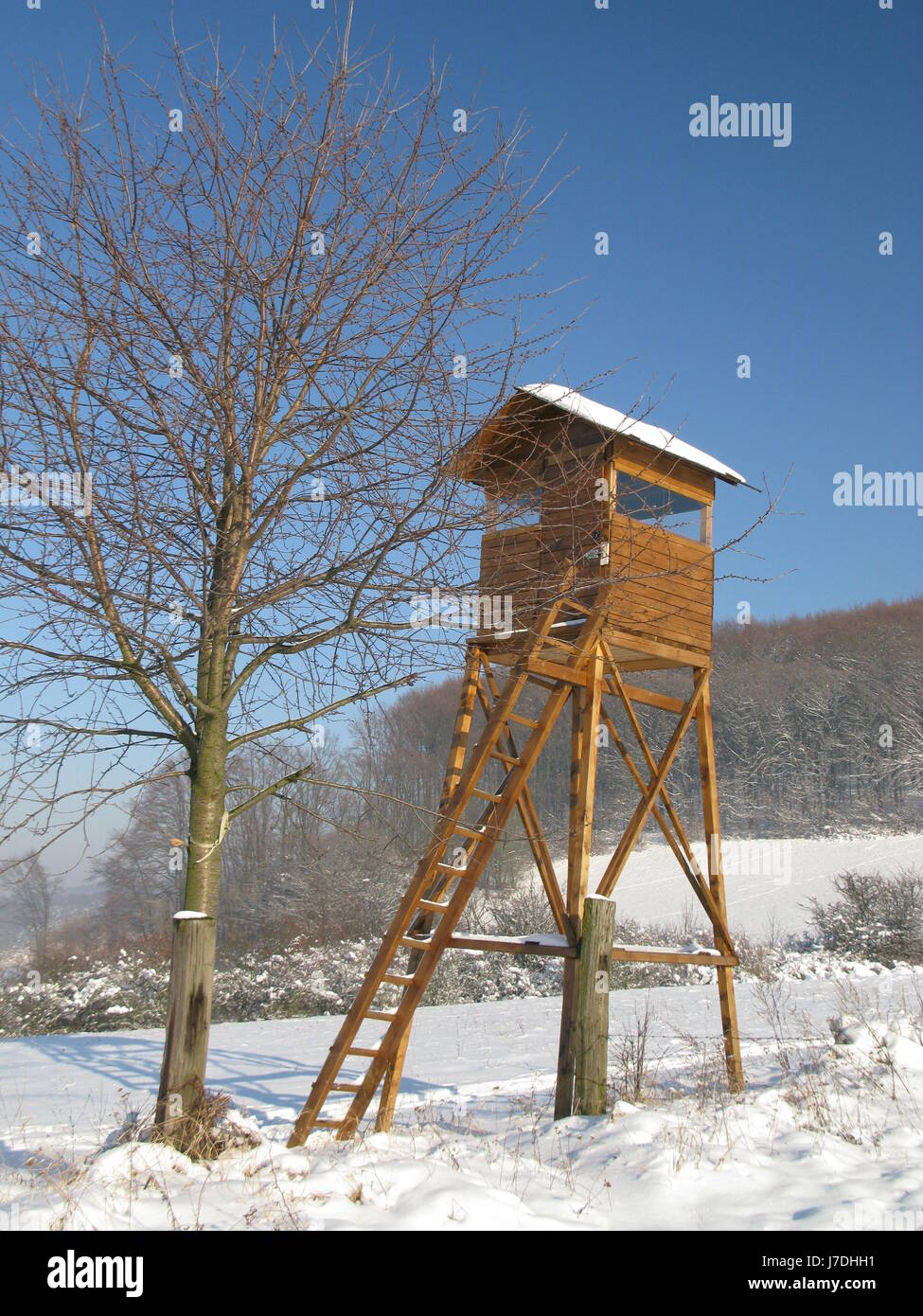 wait waiting station environment enviroment tree mountains winter wood wild - Stock Image