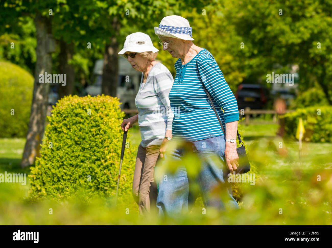 Elderly women taking a summer walk through a park. - Stock Image