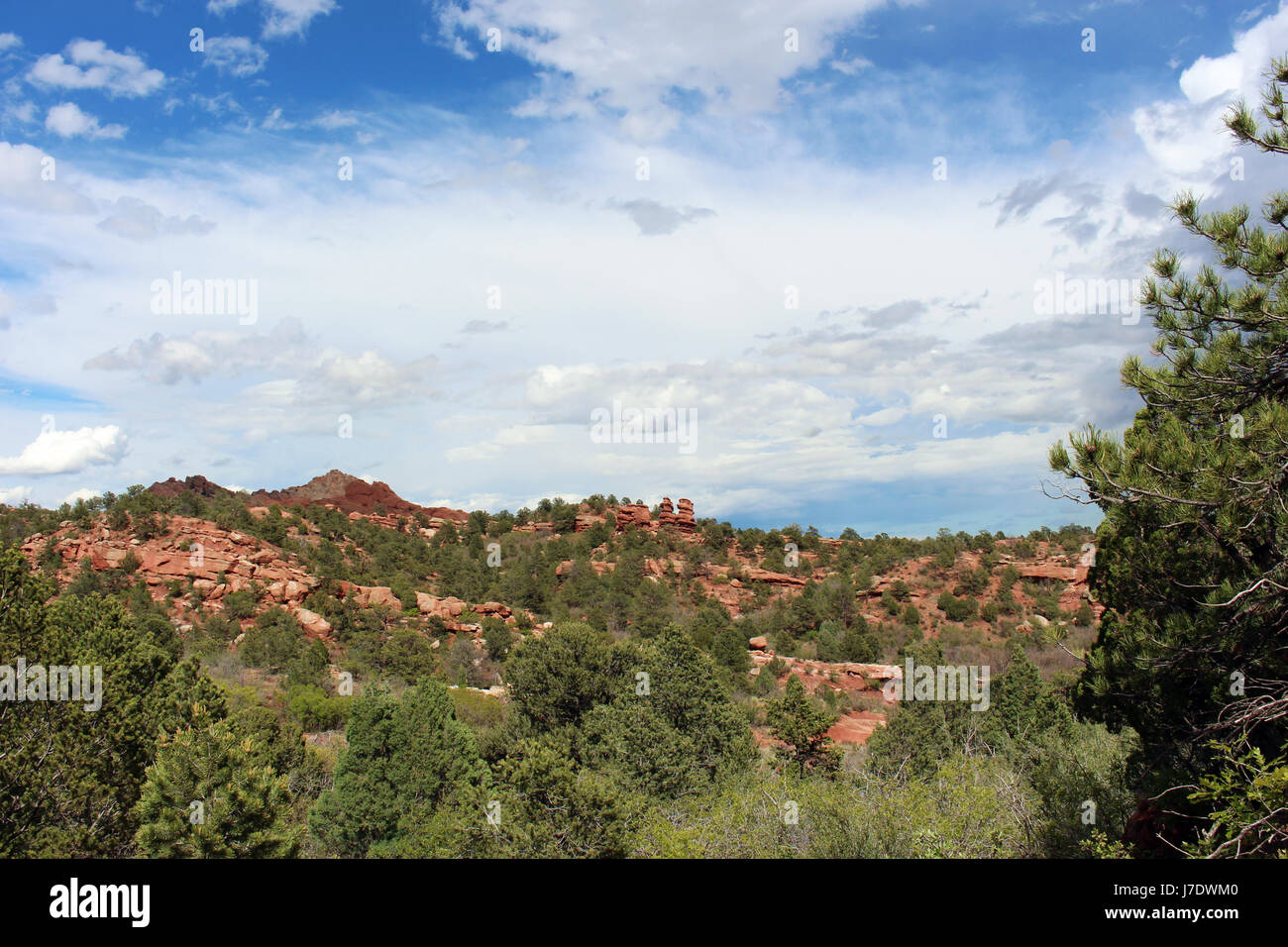 Sweeping landscape view of red rock and pine trees on the Siamese Twins Trail at the Garden of the Gods with the - Stock Image