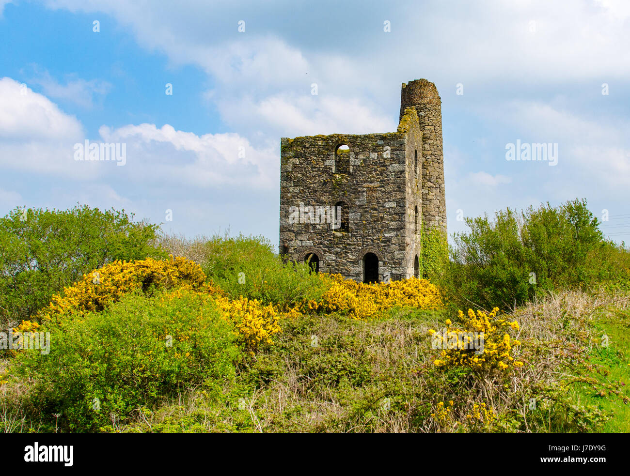 The New Stamps Engine House of Wheal Grenville near Troon, Camborne, Cornwall, UK was built around 1890 and drove - Stock Image