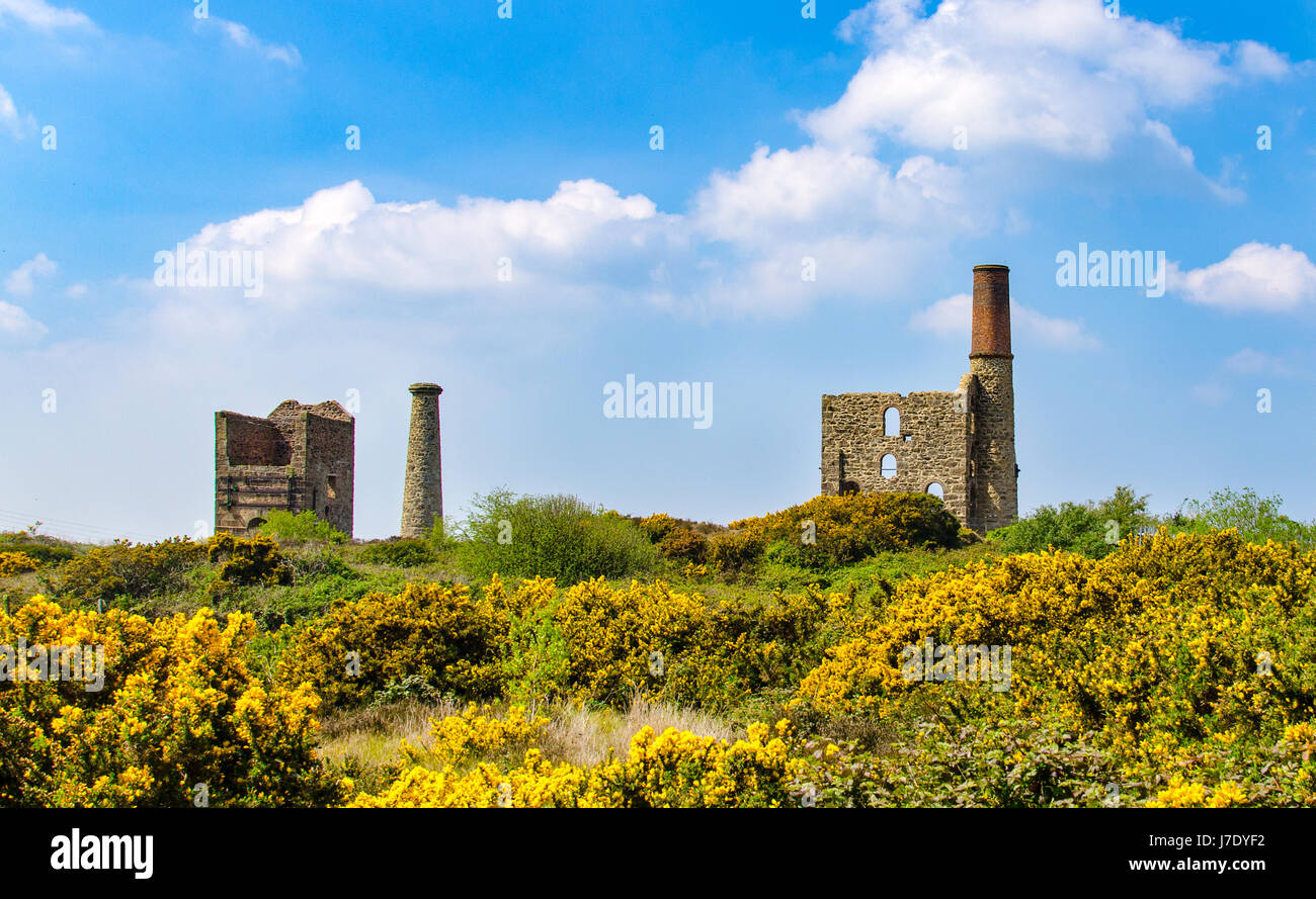 Cook's Kitchen Mine near Pool, Cornwall, UK. The pumping house is to the left and the Winding Engine House to - Stock Image