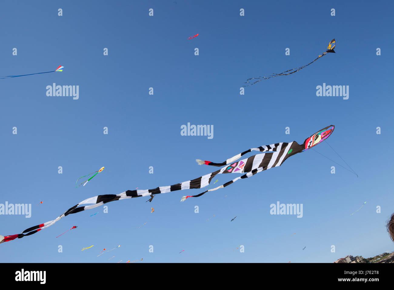 Festival of the Winds, Bondi Beach, Sydney. Kite flying festival. - Stock Image