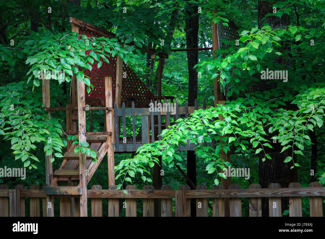 Backyard Tree house in woods - Stock Image