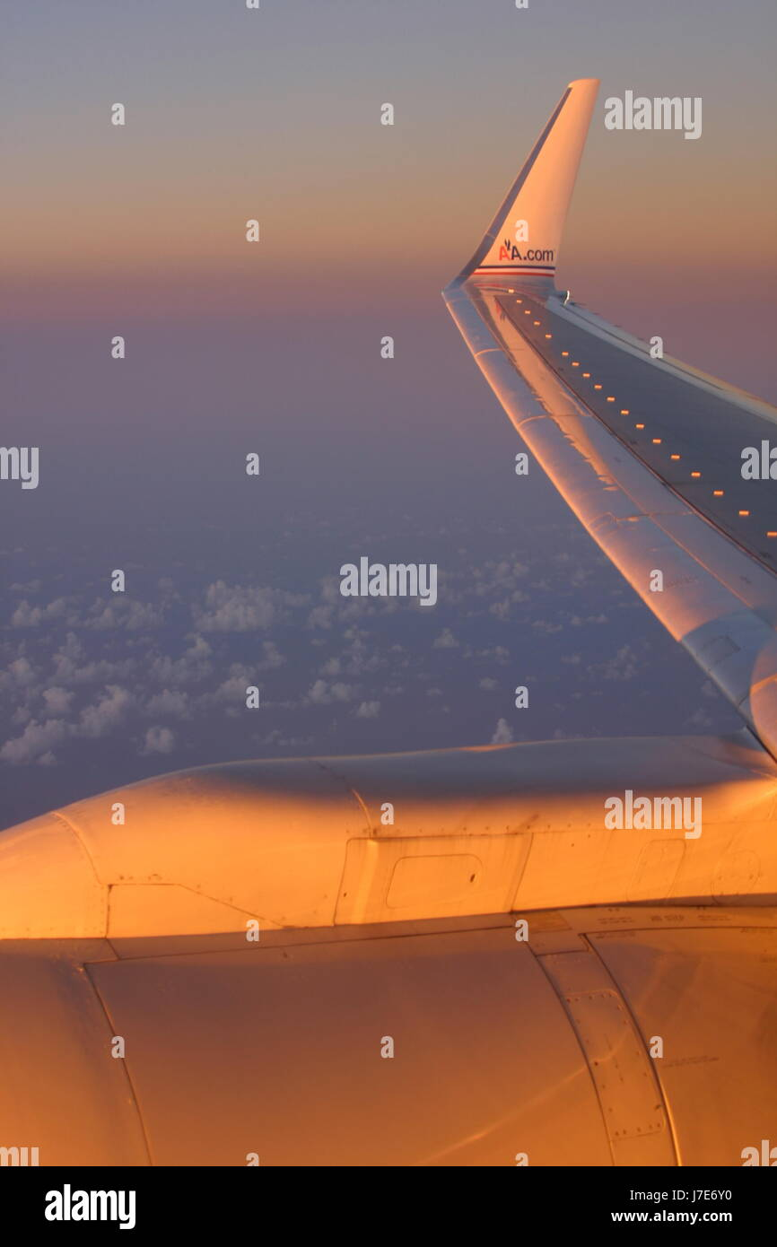 Sunset inflight gold wing - Stock Image
