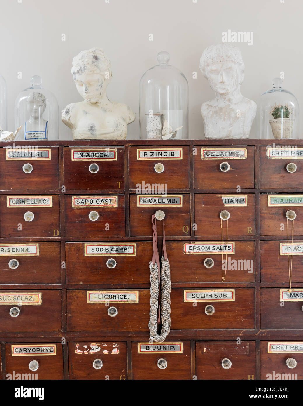 Glass bell jars and plaster busts on top of antique apothecary cabinet Stock Photo