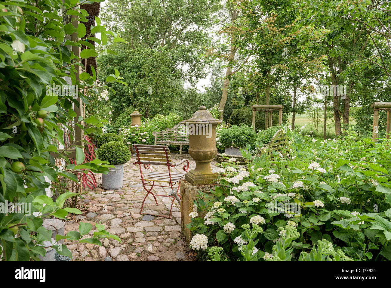 Pebble stone path with clipped box spheres and chair in grounds of 17th century farmhouse - Stock Image