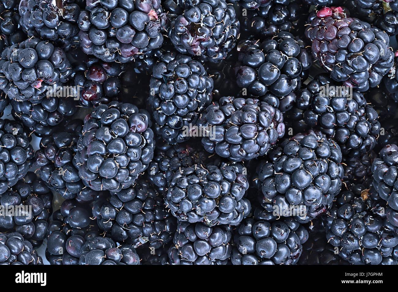 Full frame background of juicy raw blackberry fruit. - Stock Image