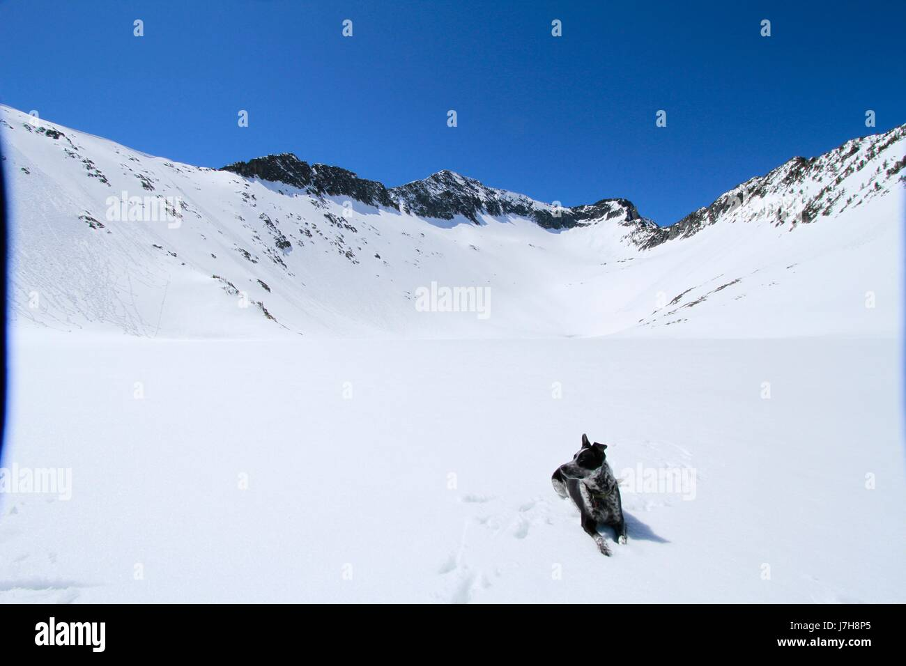 Crazy Mountains with snow, Montana - Stock Image