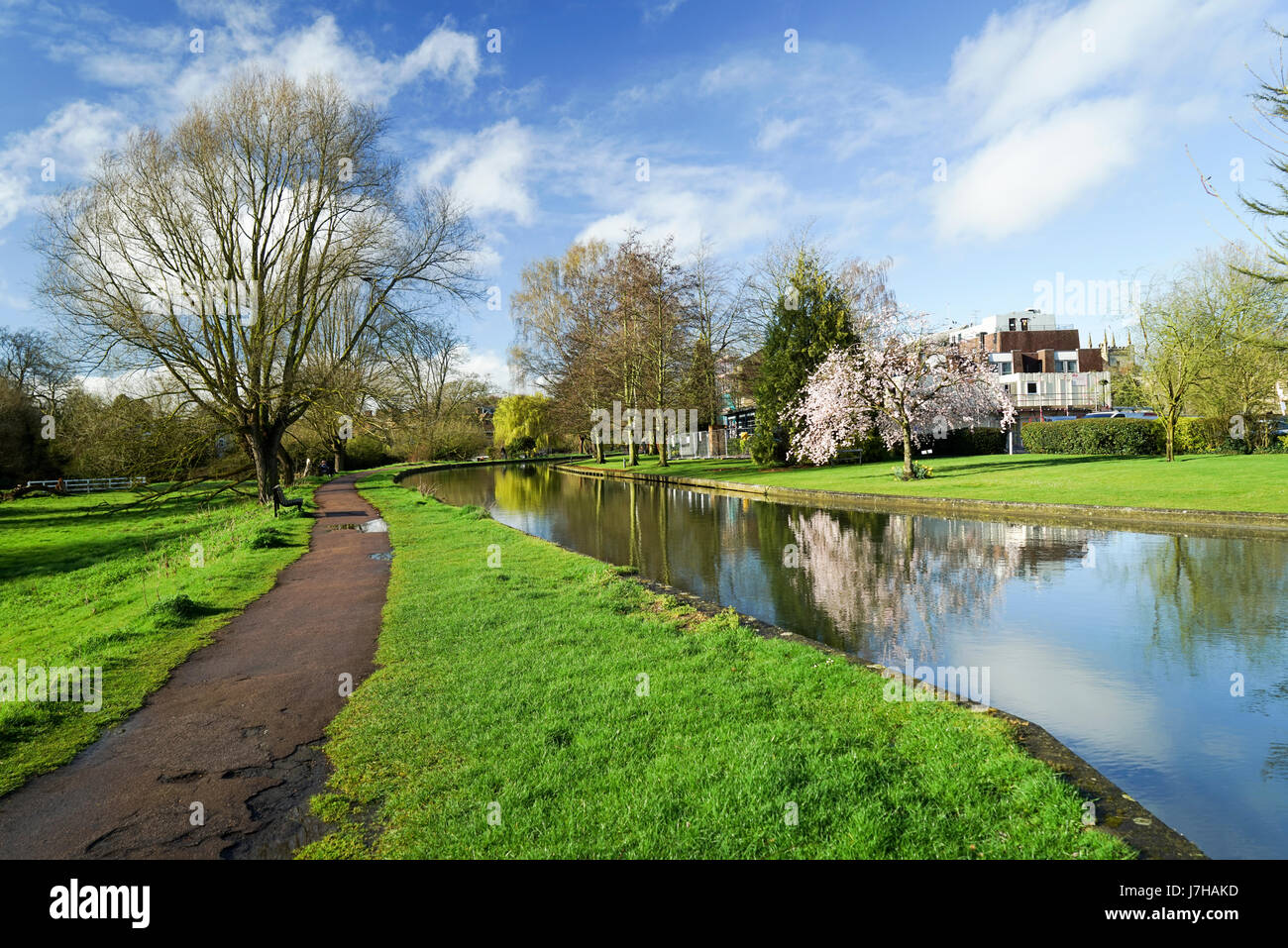 Morning Reflections in the River Cam, Cambridge, UK -2 - Stock Image