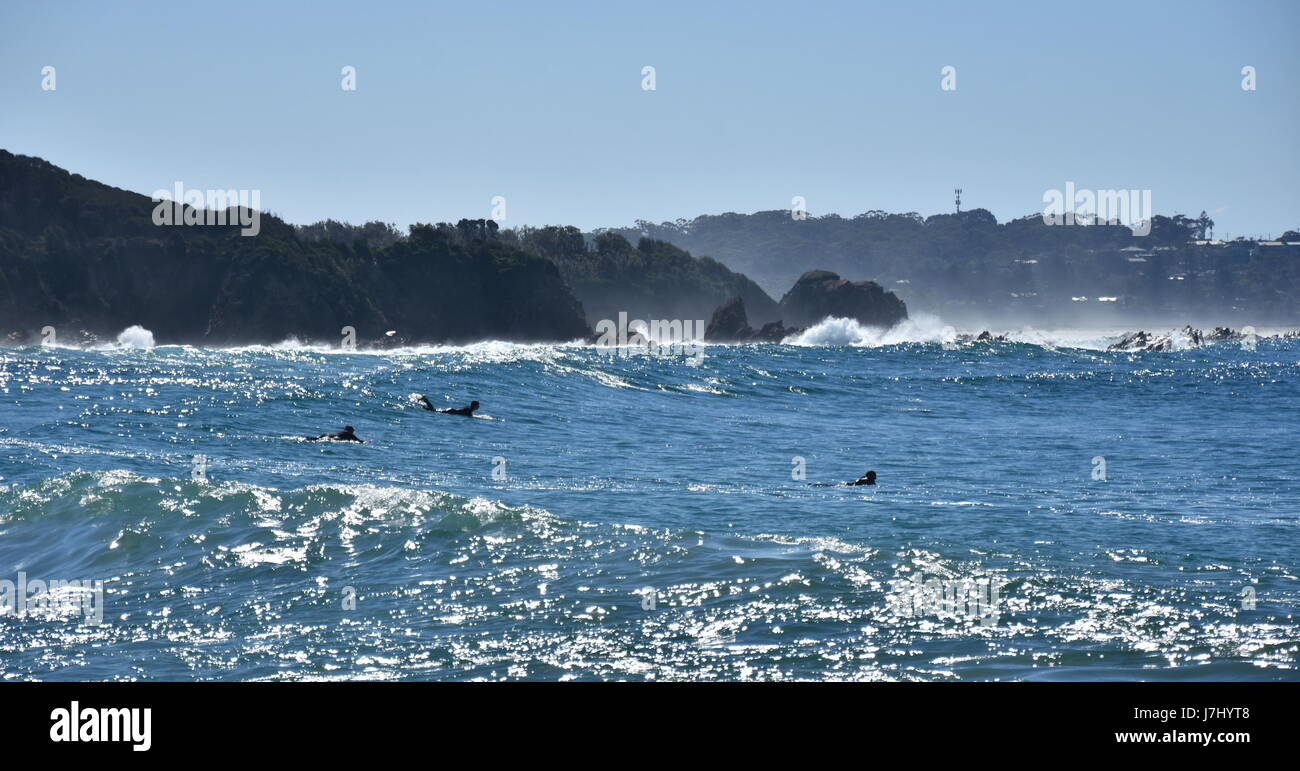 People surfing on Potato Point beach. Surfers sit on surf boards wait for big ocean wave. - Stock Image